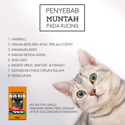 13++ Muntah kucing warna coklat trends
